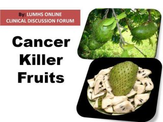 Ilona Selke English Blog 1000 Times More Effective Than Chemo